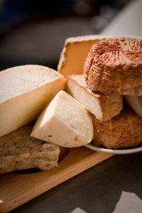 Gutes vom Bauernhof - Käse aus dem Karst