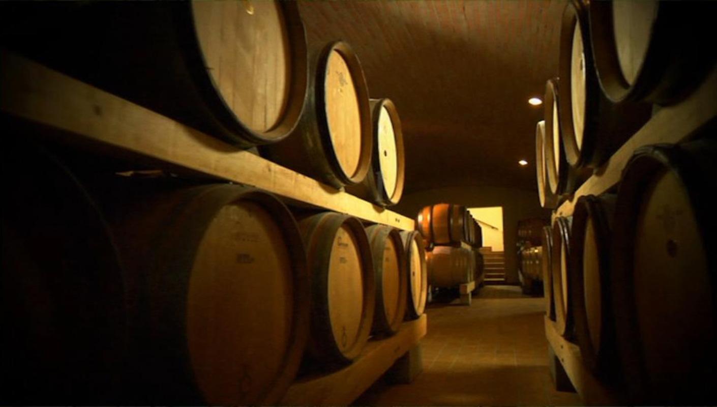 Weingut Wien - Weinproduzenten
