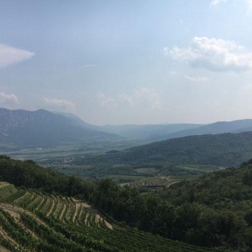 Weinregionen