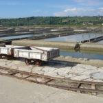 Salinen von Secovlje bei Piran